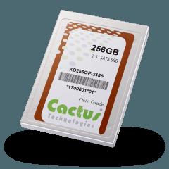 Dysk SSD SATA cactus